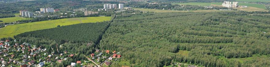 Почти 130 СНТ «новой Москвы», Подмосковья и прилегающих к Московскому региону областей обеспечат электричеством за 4 года